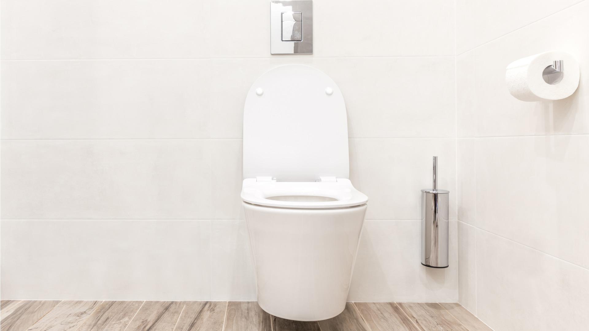 Installation de WC suspendu