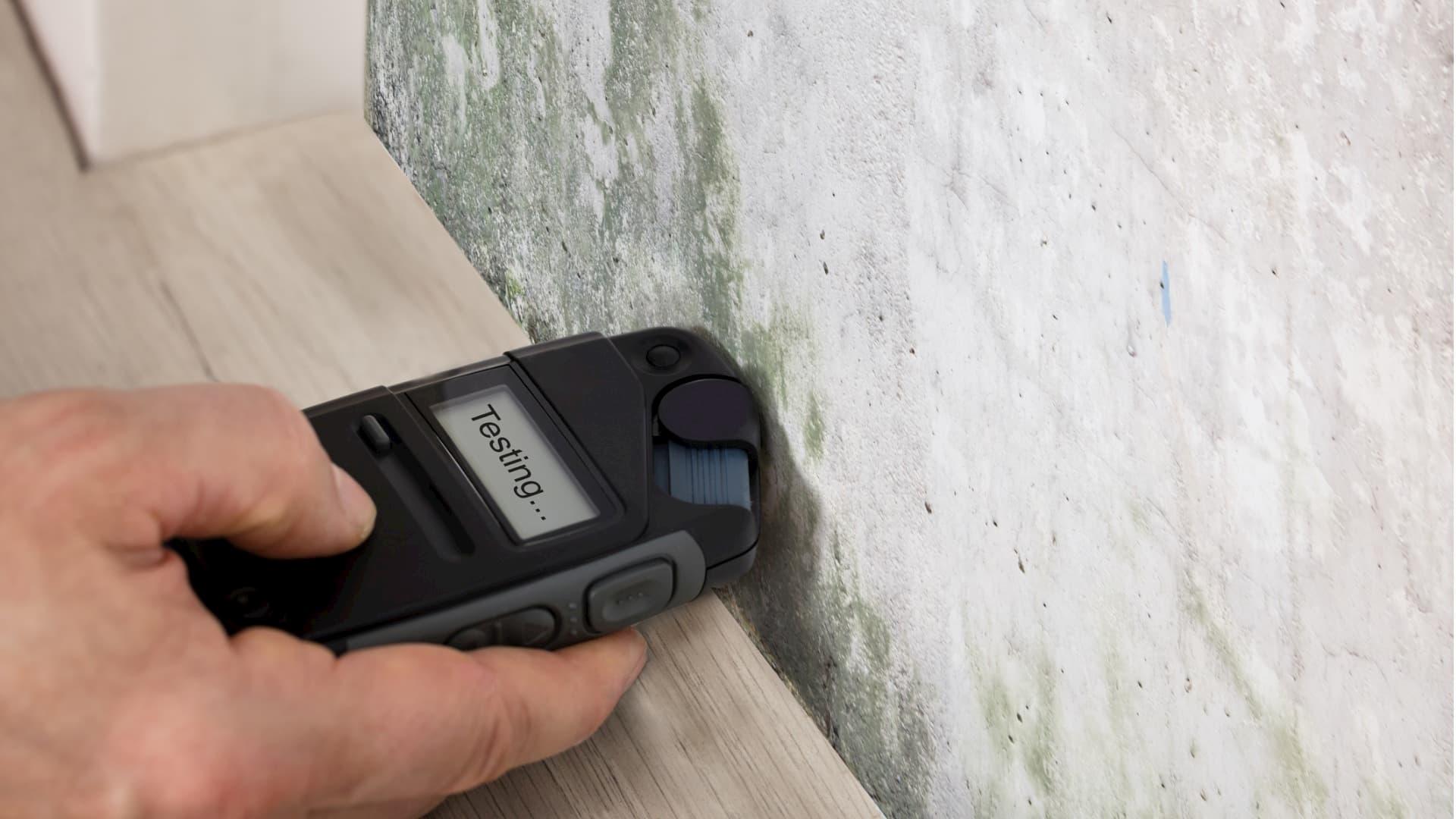 Test d'humidité murs et plafond